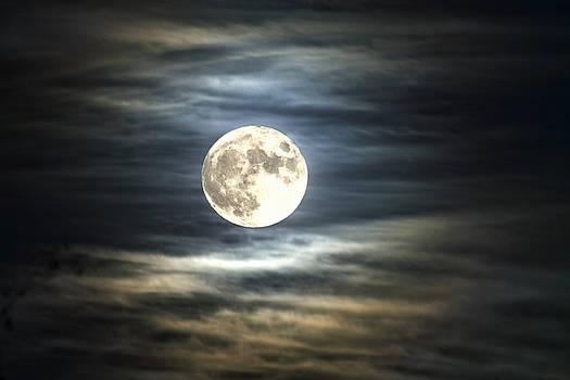 Full Moon Of 11/25/2015 by Gary Larson