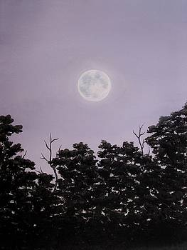 Full Moon on a Summer Evening by Anna Bronwyn Foley