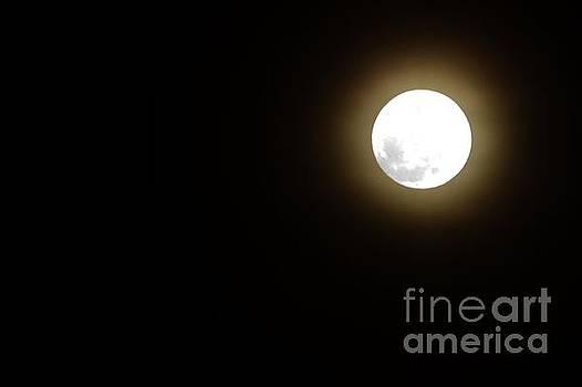 Bob Sample - Full Moon On Good Friday