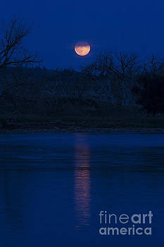 Full Moon Over the Tongue by Shevin Childers
