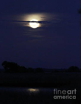 Full Moon Reflecting in the marsh by Myrna Bradshaw