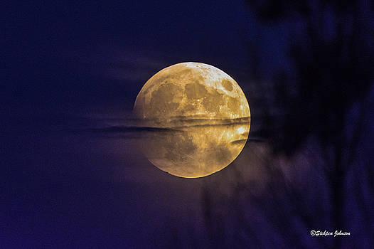 Full Moon Rise  by Stephen  Johnson