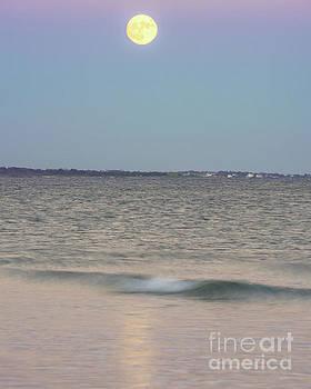 Full Moon River by Steven Natanson