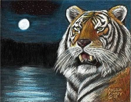 Full Moon Tiger by Angela Finney