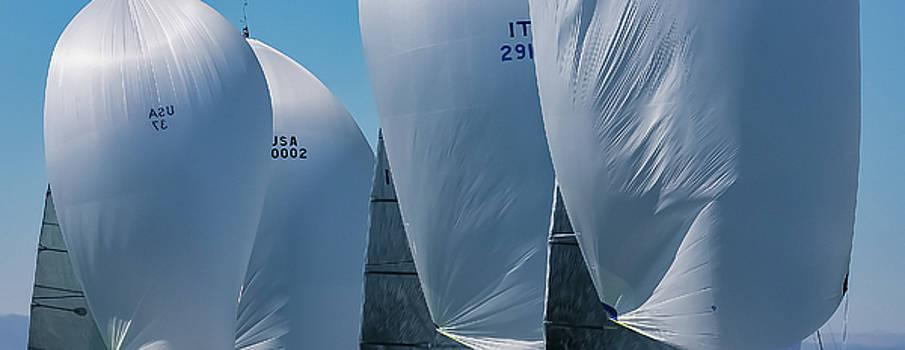 Steven Lapkin - full sail