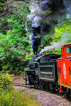 Full Steam No. 1702 by Bluemoonistic Images