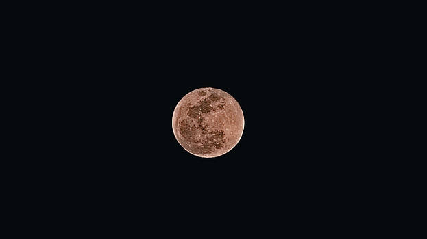 Full Super Blue Moon by Philip A Swiderski Jr