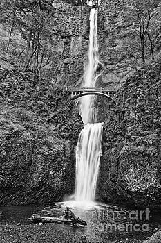 Jamie Pham - Full view of Multnomah Falls