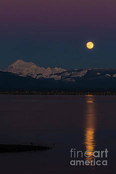 Full Wolf Moon Over Mount Baker and Fidalgo Bay by Paul Conrad