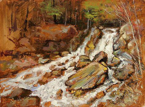 Fumee Falls Quinnessec MI by Larry Seiler