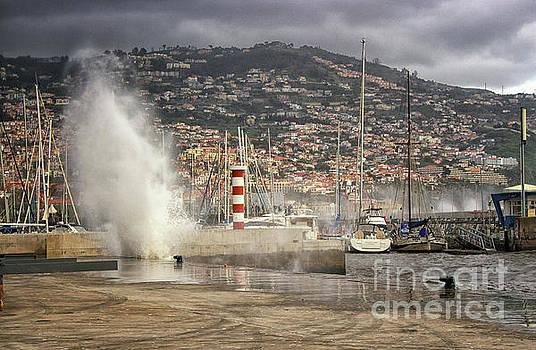 Funchal Harbor Madeira by Lynn Bolt