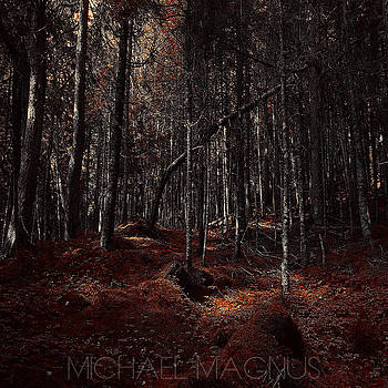 Fundy Reds  by Michael Magnus