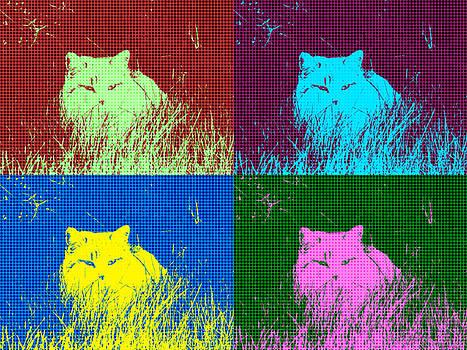 Kyle West - Funky Cat
