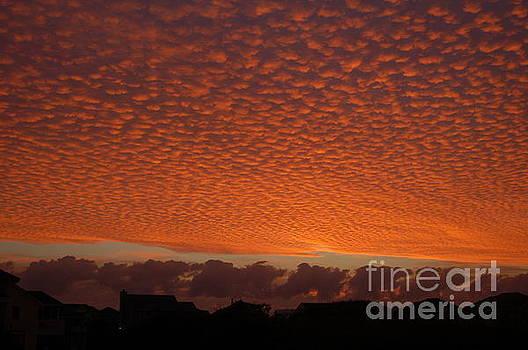 Funky Sky by Don Wilhour