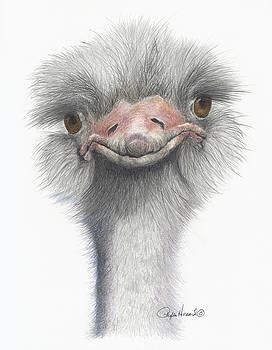 Phyllis Howard - Funny Face