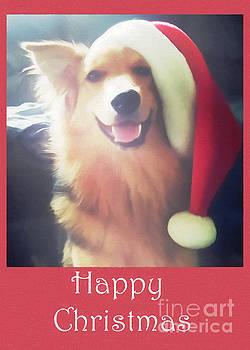 Abbie Shores - Furry Christmas Elf