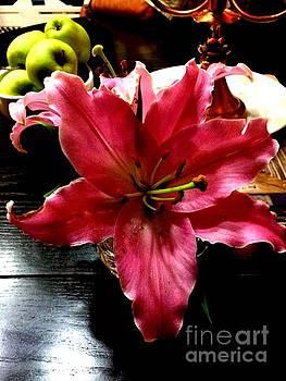 Fushia Beauty by Deborah MacQuarrie-Selib