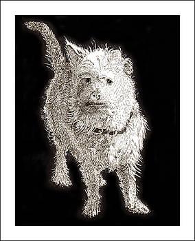 Jack Pumphrey - Fuzzy Molly