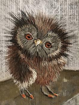 Fuzzy Owl by Cristel Mol-Dellepoort