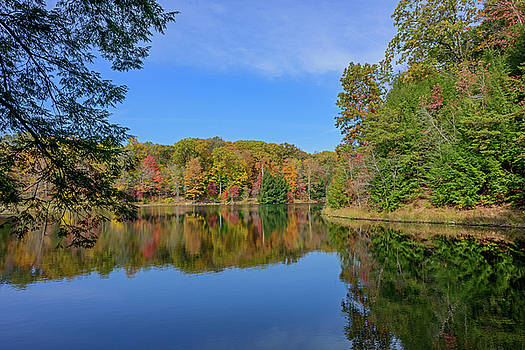 FX10A-2820 Rose Lake by Ohio Stock Photography