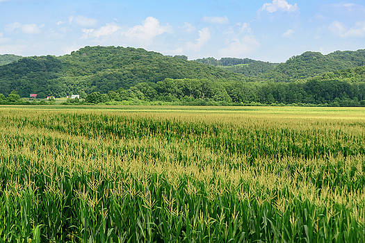FX94A-102 Vinton County Farm Field by Ohio Stock Photography