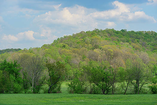 FX94A-6 Vinton County Spring by Ohio Stock Photography