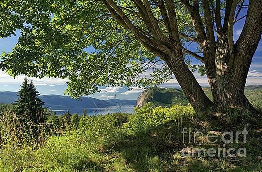Fyresdal, Telemark, Norway by David Bleeker