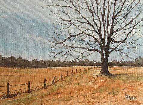 Ga Winter Study by Pete Maier