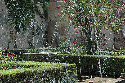 Gardens of the Alhambra by Al Junco