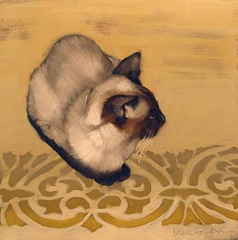 Gadjo by Diane Hoeptner