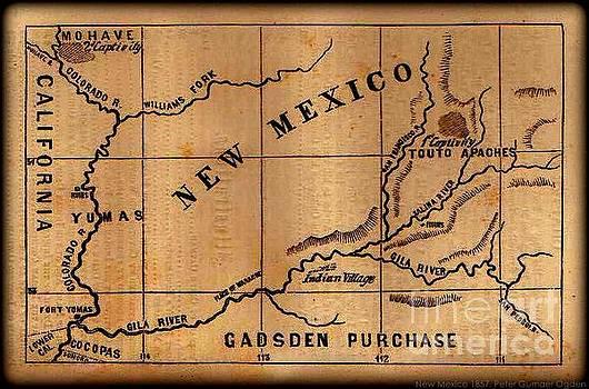 Peter Gumaer Ogden - Gadsden Purchase 1850s New Mexico Map