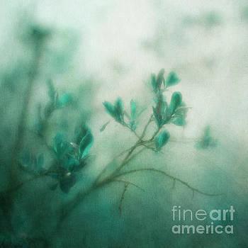 In the deep forest 3 by Priska Wettstein