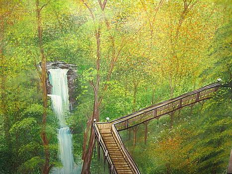 Gainesville Park by Betty Reineke