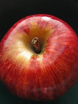 Gala Apple by Lindie Racz
