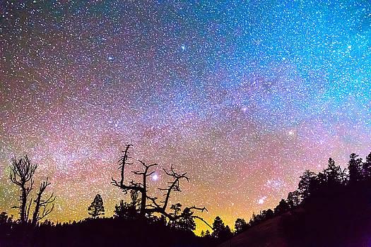 James BO Insogna - Galaxy Night
