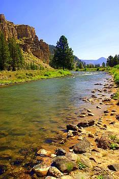 Marty Koch - Gallitan River 1