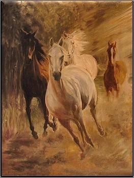 Gallop by Ewald Smykomsky