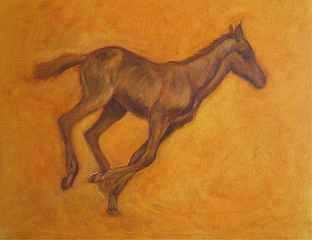 Galloping Colt by Oksana Zotkina