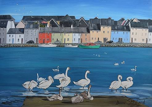 Galway Swans Claddagh Quay Galway Ireland by Diana Shephard
