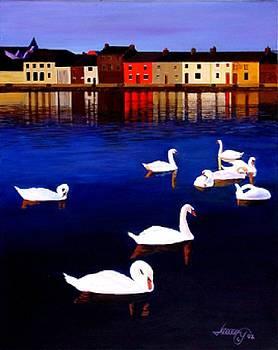 Galway SWANS II by JoeRay Kelley