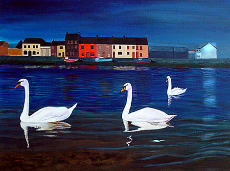 Galway Swans by JoeRay Kelley