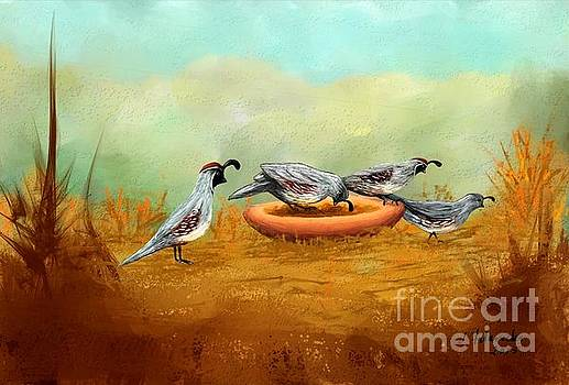 Gambel's Quail on Parade by Judy Filarecki