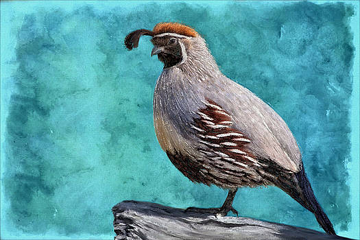 Gamble Quail's Backdrop In Teal by Barbara Chichester