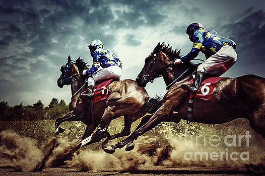 Gambling horses horse competition by Dimitar Hristov