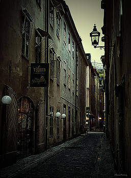 Gamla Stan Alley I by Ramon Martinez