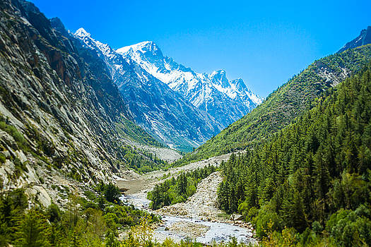 Ganges River Valley - Indian Himalayas by Nila Newsom