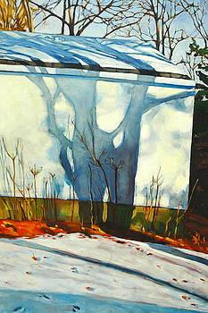Garage Shadow by Sarah Taylor Ko