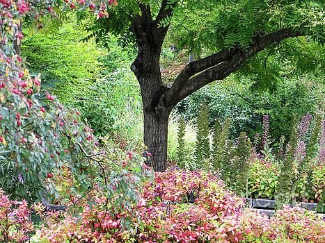 Garden 2 by Adrian March