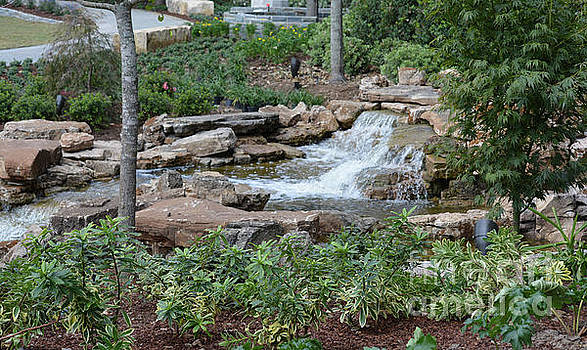 Garden And Waterfall by Ruth Housley