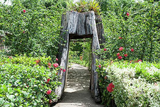 Ramunas Bruzas - Garden Arch